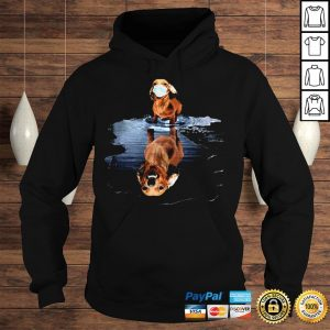 Dachshund Face Mask Water Reflection Dachshund Shirt Hoodie